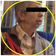 ältere Dame in der Bahn